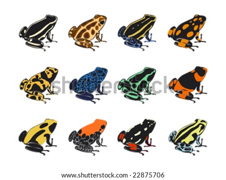 Poison-dart frogs (Dendrobates). Vector study of colors and patterns. - stock vector