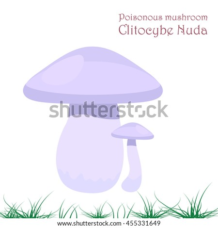 Poisonous Mushroom on a white background. mushroom Clitocybe Nuda. For your design - stock vector