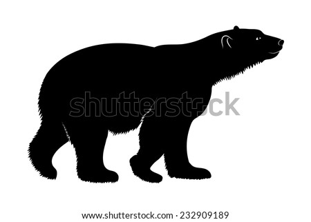 polar bear on a white background - stock vector