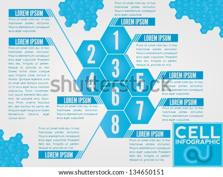 Polygon vector infographic. Also usable for brochures and for the magazine lists layouts. - stock vector