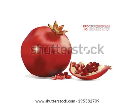 Pomegranate Vector Illustration. Whole pomegranate and a part of the fruit realistic image against white background. Use for food  and cosmetic package labeling, decoration, illustration. Editable. - stock vector