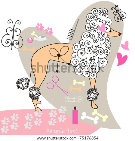 Poodle - stock vector