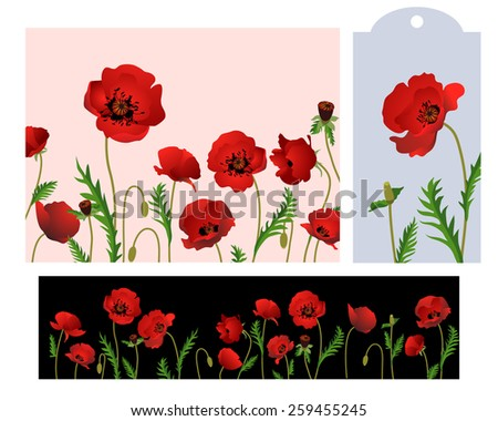 Poppies Flowers Card & Banner