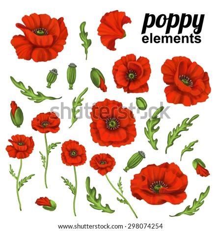 Poppy flower red poppies isolated on stock vector 298074254 poppy flower red poppies isolated on white background mightylinksfo