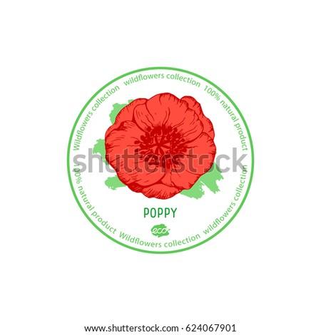 Poppy flower vector illustration wildflowers collection stock vector poppy flower vector illustration wildflowers collection medicinal herbs design for eco nature mightylinksfo