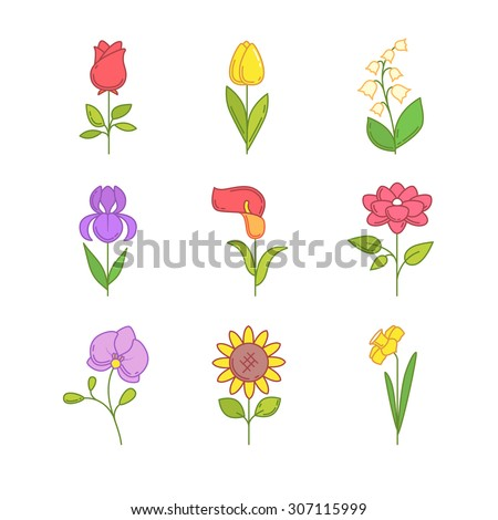 Popular wedding flowers blossoming. Thin line icons set. Modern flat style symbols isolated on white for web use. - stock vector
