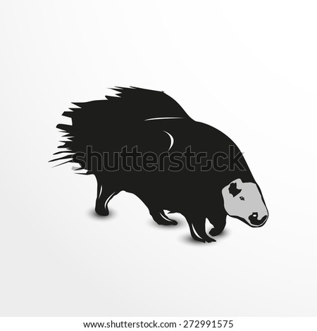 Porcupine. Vector illustration. Animal collection. - stock vector