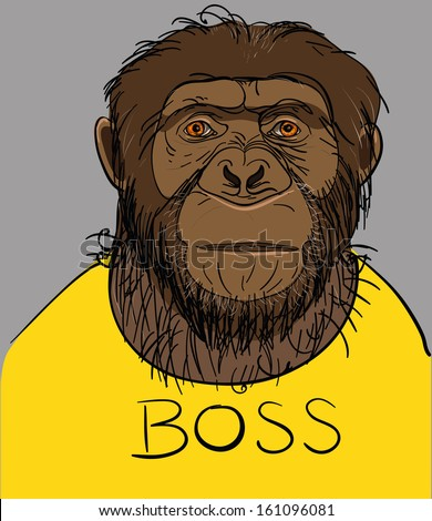Portrait of a monkey dressed in a yellow T-shirt with the boss - stock vector