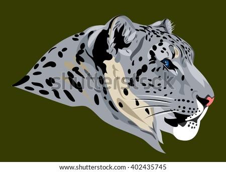 portrait of a snow leopard - stock vector