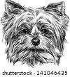 portrait of dog - stock vector