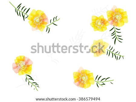 Portulaca flower cute yellow flowers leaves stock vector 2018 portulaca flower cute yellow flowers with leaves for object or background cardvector illustration mightylinksfo