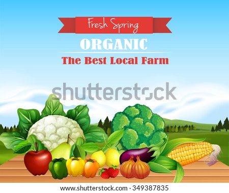 Poster design with fresh fruits and vegetables illustration - stock vector