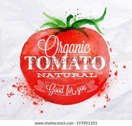 Poster with red watercolor tomato lettering organic tomato natural good for you - stock vector