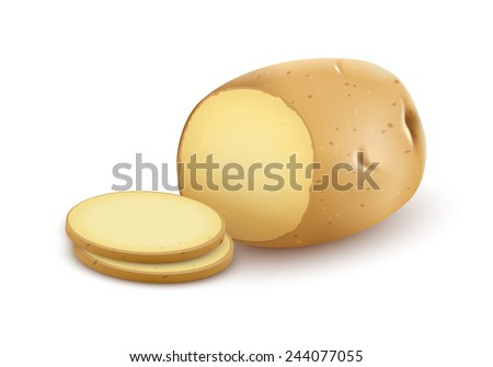 Potatoes organic vegetable with cuts. Eps10 vector illustration. Gradient mesh used. Isolated on white background - stock vector