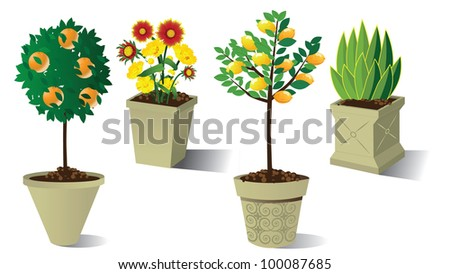 Potted Topiary Collection EPS 8 vector, grouped for easy editing No open shapes or paths. - stock vector