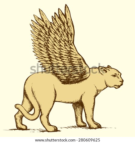 Powerful pretty young strong large lioness standing with open fluffy wings. Vector freehand ink drawn background sketch in old art scribble antiquity style pen on paper. Side view with space for text - stock vector
