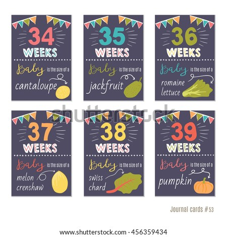 Pregnancy 3439 weeks vector design templates stock vector pregnancy 34 39 weeks vector design templates for journal cards scrapbooking cards greeting pronofoot35fo Images