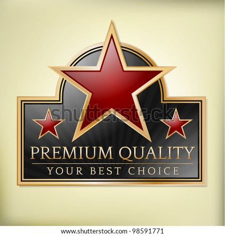 Premium quality shiny label with stars - stock vector