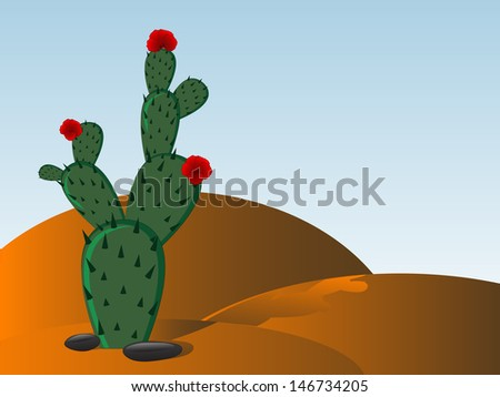 Prickly Pear Cactus Flower Stock Images, Royalty-Free Images ...