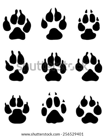 Print paws of dogs, vector - stock vector