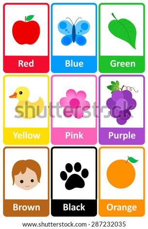Printable Flash Card Colletion Colors Their Stock