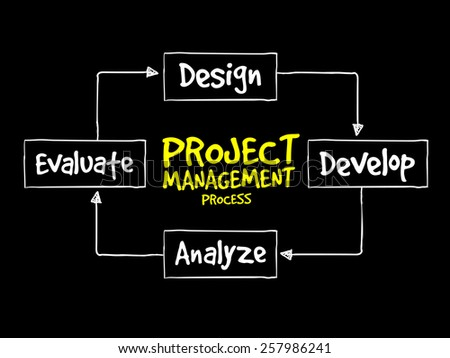 Project management process, business concept - stock vector