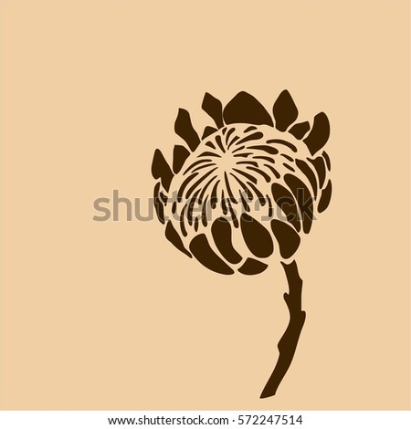 proteus graphically drawing logo embossing stock vector