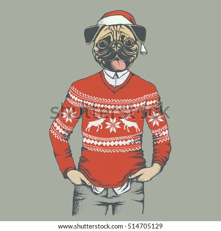Pug dog vector illustration. Pug dog in human sweater or sweatshirt