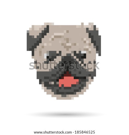 Pug portrait abstract isolated on a white backgrounds, vector illustration