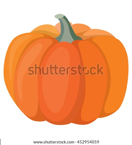pumpkin - a big beautiful vegetable, the symbol of Halloween and Thanksgiving - stock vector