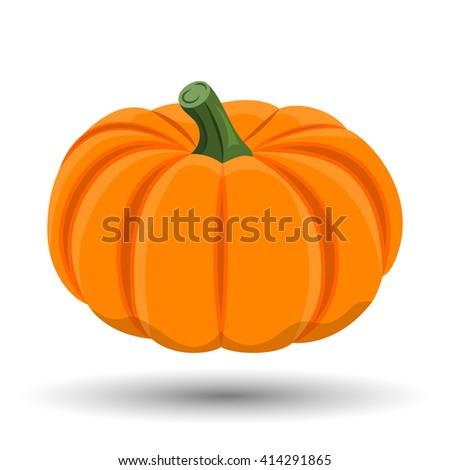 Pumpkin colorful icon - stock vector