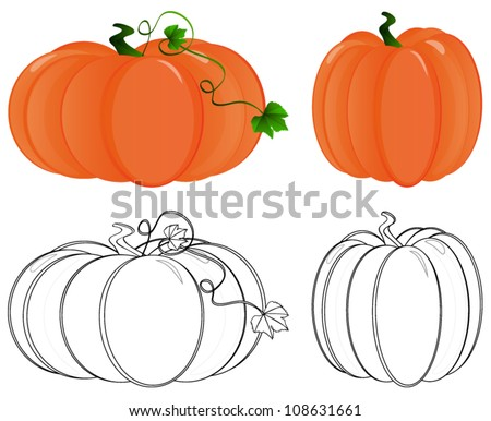 Pumpkin in color and pumpkin in outline