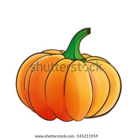 Pumpkin isolated - stock vector