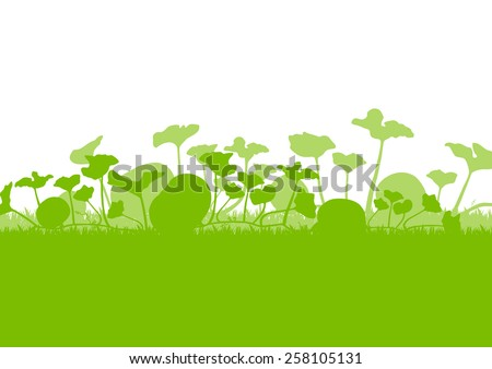 Pumpkin plants field vector background ecology green concept - stock vector