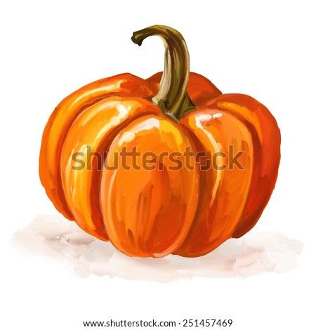 Pumpkin vector illustration  hand drawn  painted watercolor  - stock vector