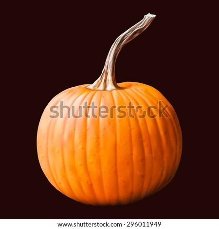 Pumpkin vegetable with water drop on dark background. Vector illustration. - stock vector