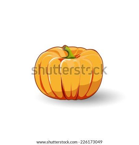 Pumpkin yellow, orange vector illustration on white background. - stock vector