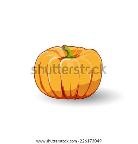 Pumpkin yellow, orange vector illustration on white background. - stock vector