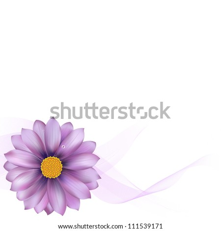 Purple Gerber With Blend, Isolated On White Background, Vector Illustration - stock vector