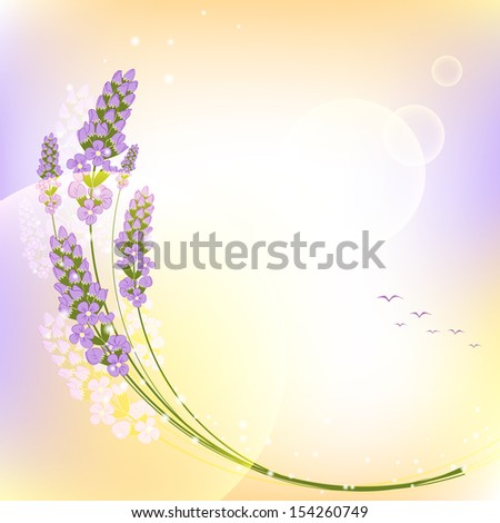 Purple Lavender Flower Colorful Background - stock vector