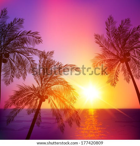 Purple tropical sunset with palms silhouettes, vector illustration - stock vector