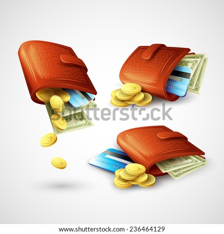 Purse with money, credit cards and coins. Vector illustration - stock vector