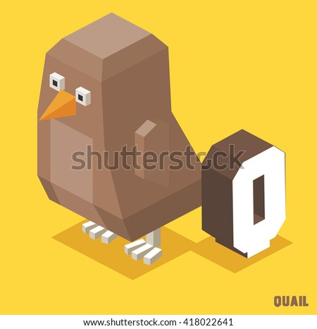 Q for Quail. Animal Alphabet collection. vector illustration - stock vector