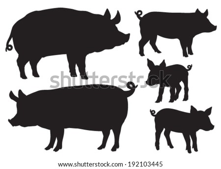 Quality black and white vector silhouettes of pigs - stock vector