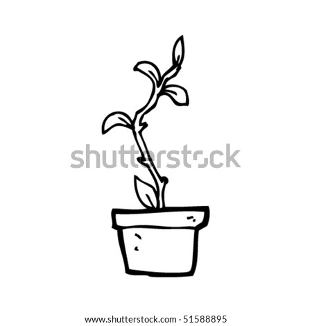 quirky drawing of a house plant