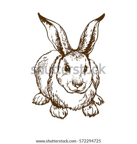 White rabbit outline tattoo