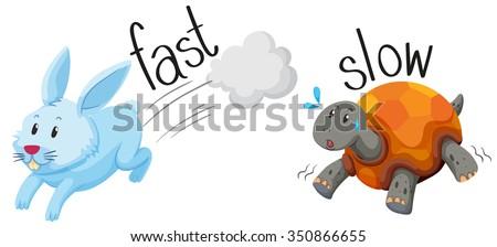 Rabbit runs fast and turtle runs slow illustration - stock vector