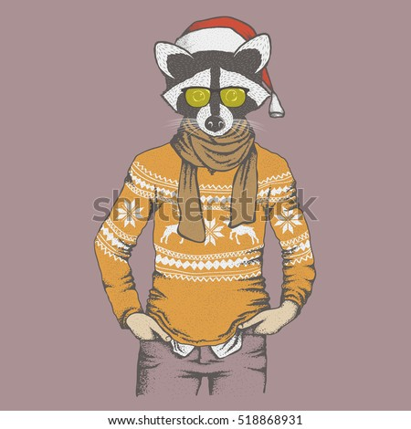 Raccoon vector illustration Christmas costume. Raccoon in human sweatshirt and Santa hat