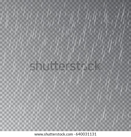 Rain isolated on transparent background. Vector.