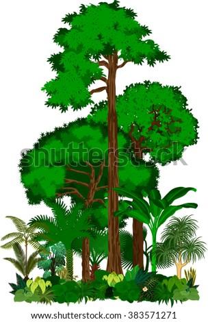 Rainforest vector illustration. Vector Green Tropical Forest jungle  - stock vector